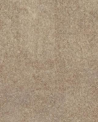 Sample pic of Beige Linen