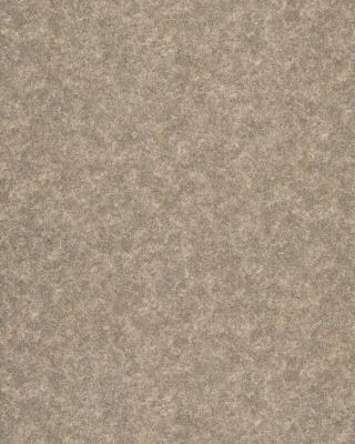 Sample pic of Sage Coral