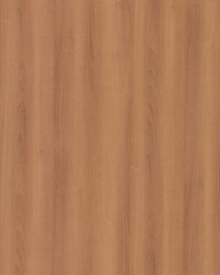 Sample pic of Cinnamon Noce