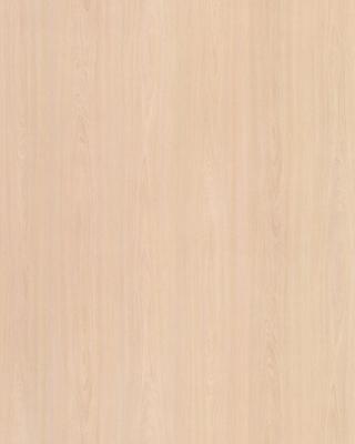 Sample pic of White Elm