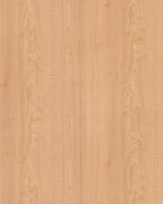Sample pic of Fusion Maple