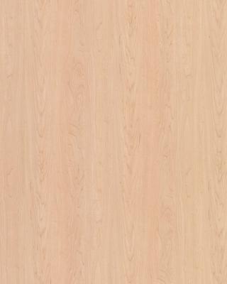 Sample pic of Hardrock Maple