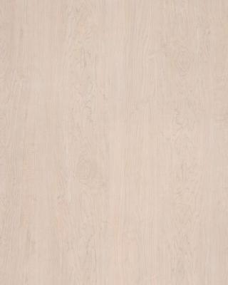 Sample pic of Captiva Maple