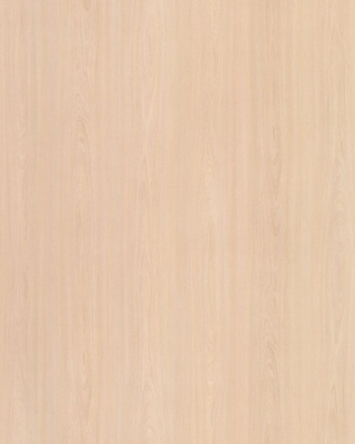 Sample pic of White Elm